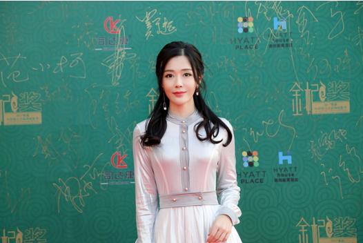 《大夏宝藏》亮相2017首届中国银川互联网电影节开幕式红毯